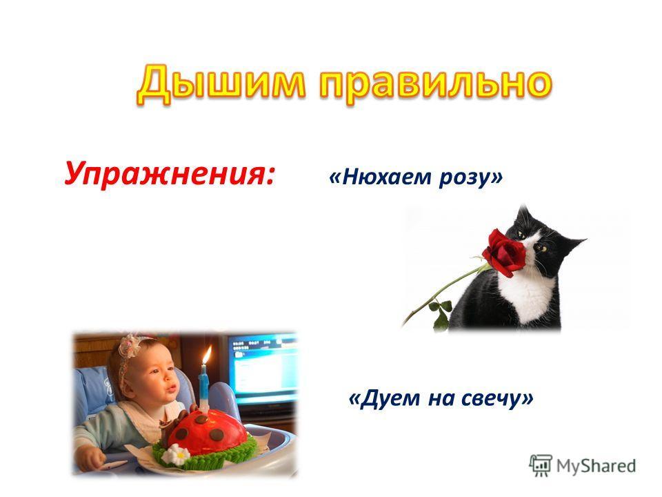 Упражнения: «Нюхаем розу» «Дуем на свечу»