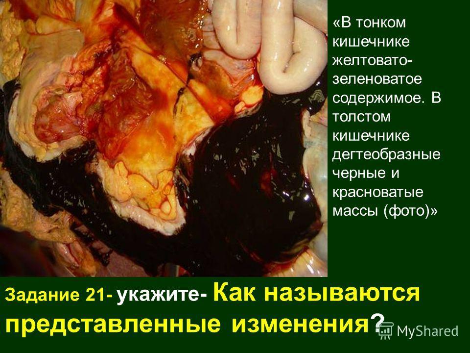 «В тонком кишечнике желтовато- зеленоватое содержимое. В толстом кишечнике дегтеобразные черные и красноватые массы (фото)» Задание 21- укажите- Как называются представленные изменения?