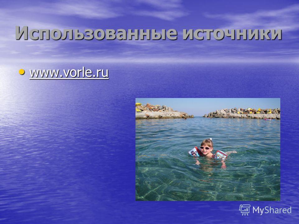 Использованные источники www.vorle.ru www.vorle.ru