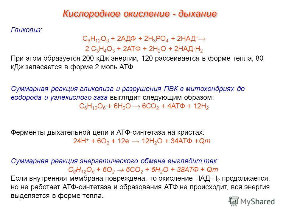 Гликолиз: С 6 Н 12 О 6 + 2АДФ + 2Н 3 РО 4 + 2НАД + 2 С 3 Н 4 О 3 + 2АТФ + 2Н 2 О + 2НАД·Н 2 При этом образуется 200 кДж энергии, 120 рассеивается в форме тепла, 80 кДж запасается в форме 2 моль АТФ Суммарная реакция энергетического обмена выглядит та