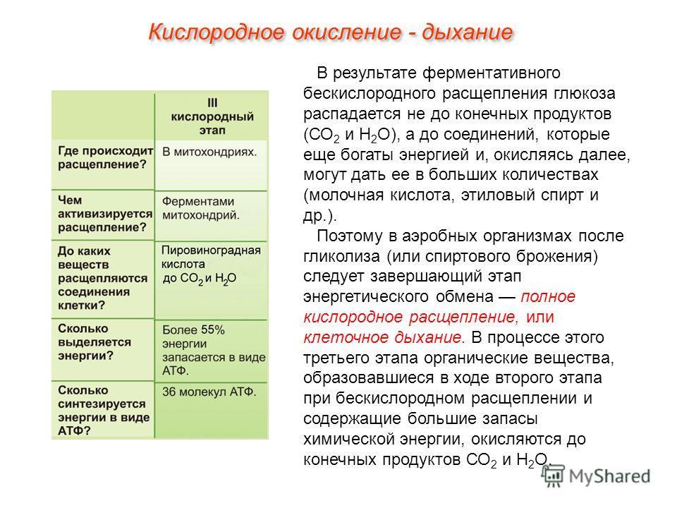 В результате ферментативного бескислородного расщепления глюкоза распадается не до конечных продуктов (СО 2 и Н 2 О), а до соединений, которые еще богаты энергией и, окисляясь далее, могут дать ее в больших количествах (молочная кислота, этиловый спи