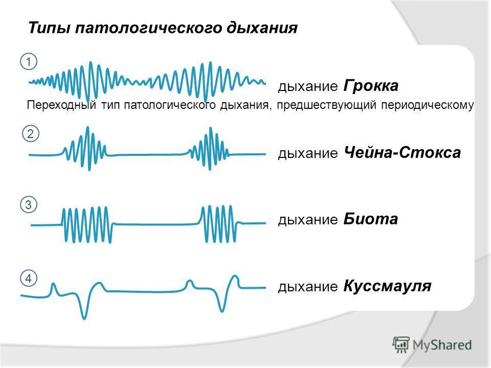 Типы патологического дыхания 1