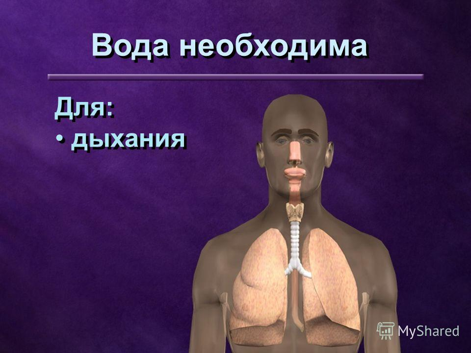 Для: дыхания Для: дыхания Вода необходима