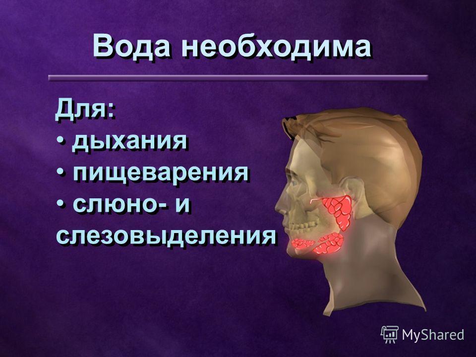 Для: дыхания пищеварения слюно- и слезовыделения Для: дыхания пищеварения слюно- и слезовыделения Вода необходима