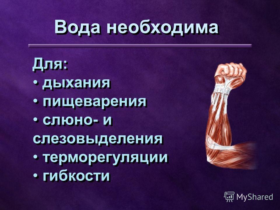 Для: дыхания пищеварения слюно- и слезовыделения терморегуляции гибкости Для: дыхания пищеварения слюно- и слезовыделения терморегуляции гибкости Вода необходима