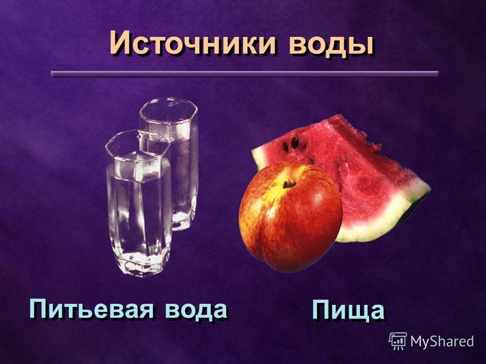 Пища Питьевая вода Источники воды
