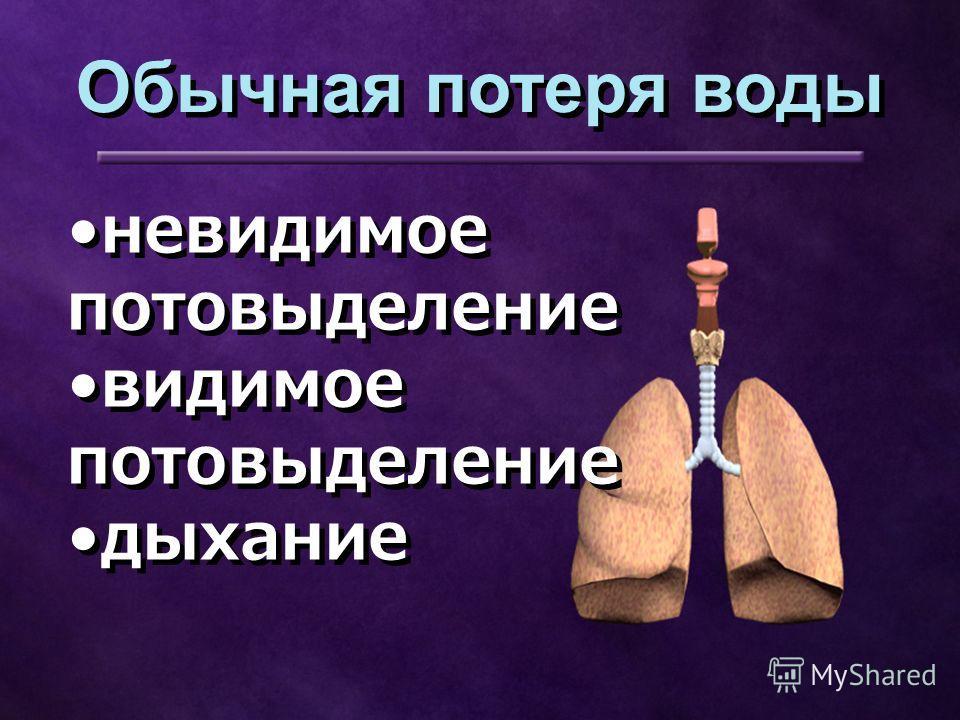 невидимое потовыделение видимое потовыделение дыхание невидимое потовыделение видимое потовыделение дыхание Обычная потеря воды