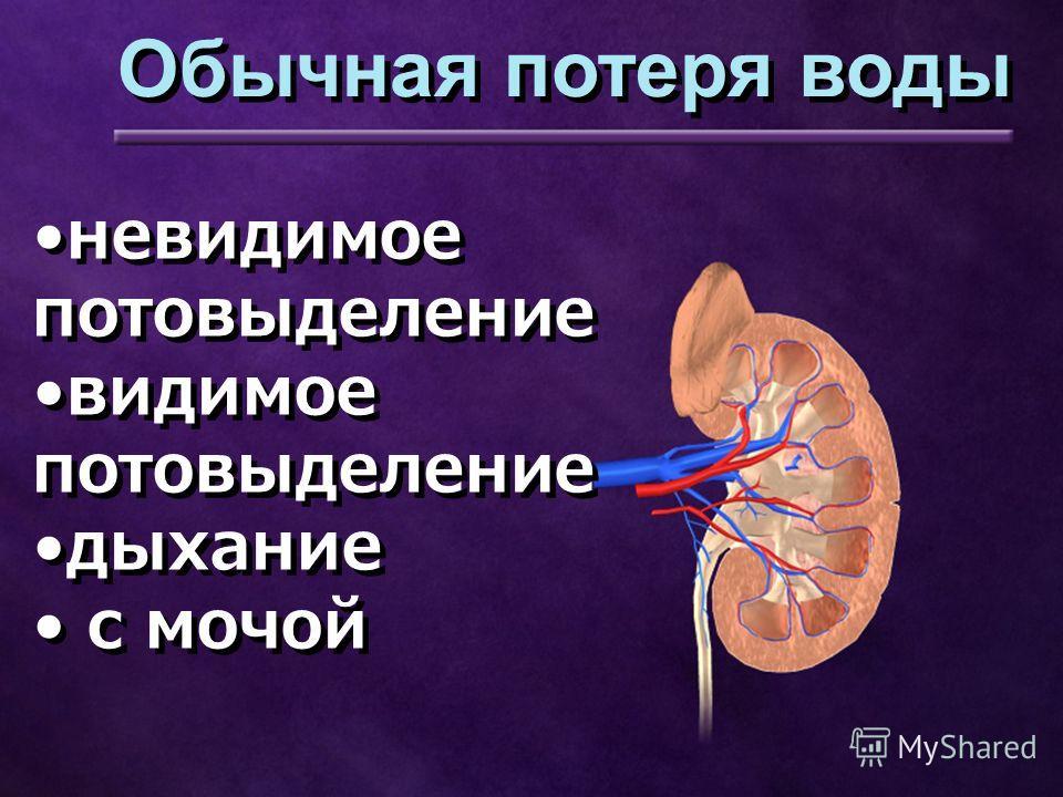 невидимое потовыделение видимое потовыделение дыхание с мочой невидимое потовыделение видимое потовыделение дыхание с мочой Обычная потеря воды