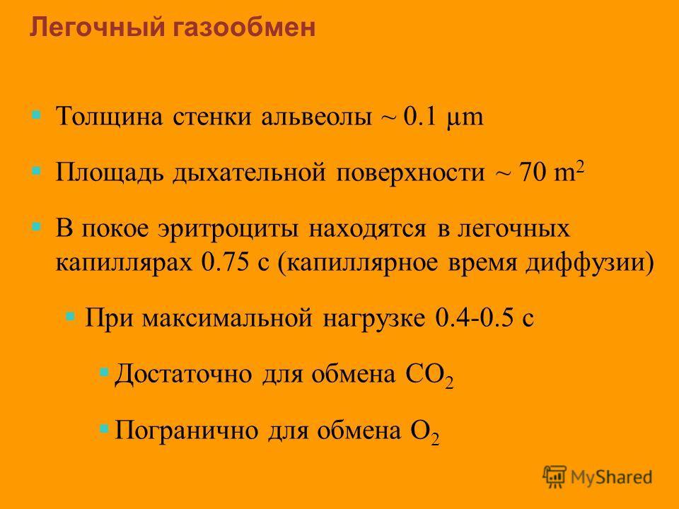 Легочный газообмен Толщина стенки альвеолы ~ 0.1 µm Площадь дыхательной поверхности ~ 70 m 2 В покое эритроциты находятся в легочных капиллярах 0.75 с (капиллярное время диффузии) При максимальной нагрузке 0.4-0.5 с Достаточно для обмена CO 2 Пограни