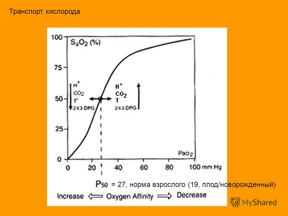 Транспорт кислорода = 27, норма взрослого (19, плод/новорожденный)