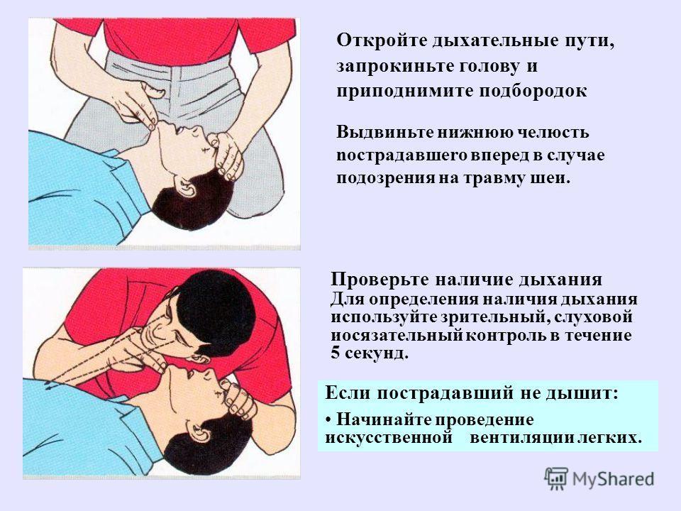 Откройте дыхательные пути, запрокиньте голову и приподнимите подбородок Выдвиньте нижнюю челюсть noстрадавшero вперед в случае подозрения на травму шеи. Проверьте наличие дыхания Для определения наличия дыхания используйте зрительный, слуховой иосяза