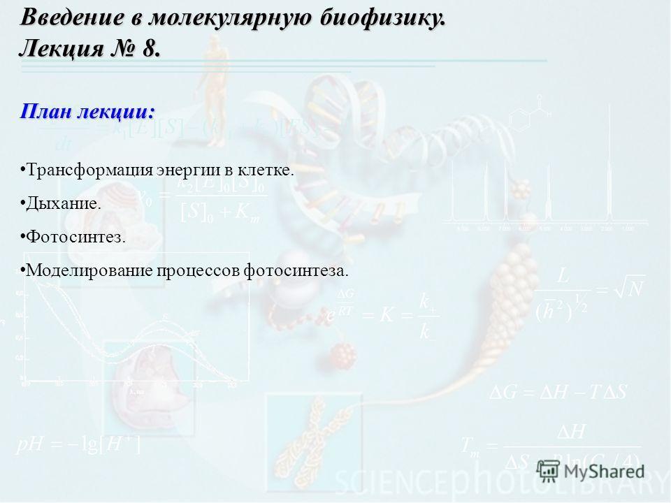 План лекции: Трансформация энергии в клетке. Дыхание. Фотосинтез. Моделирование процессов фотосинтеза. Введение в молекулярную биофизику. Лекция 8.
