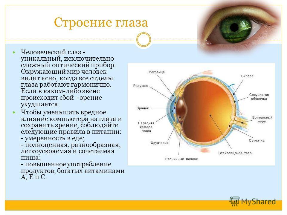 Строение глаза Человеческий глаз - уникальный, исключительно сложный оптический прибор. Окружающий мир человек видит ясно, когда все отделы глаза работают гармонично. Если в каком-либо звене происходит сбой - зрение ухудшается. Чтобы уменьшить вредно