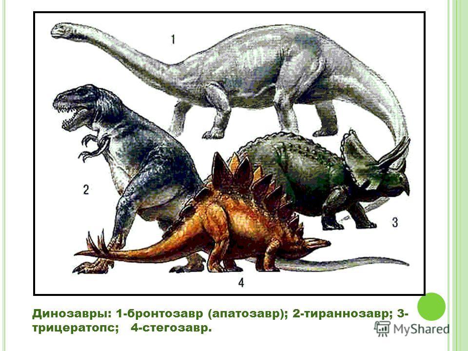 Динозавры: 1-бронтозавр (апатозавр); 2-тираннозавр; 3- трицератопс; 4-стегозавр.