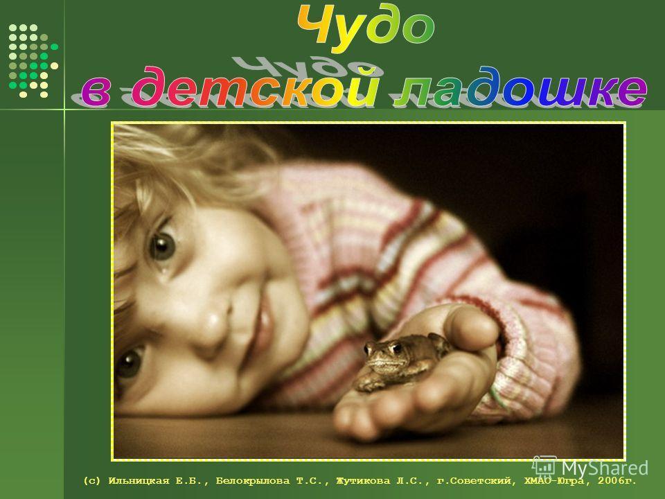 (с) Ильницкая Е.Б., Белокрылова Т.С., Жутикова Л.С., г.Советский, ХМАО-Югра, 2006г.