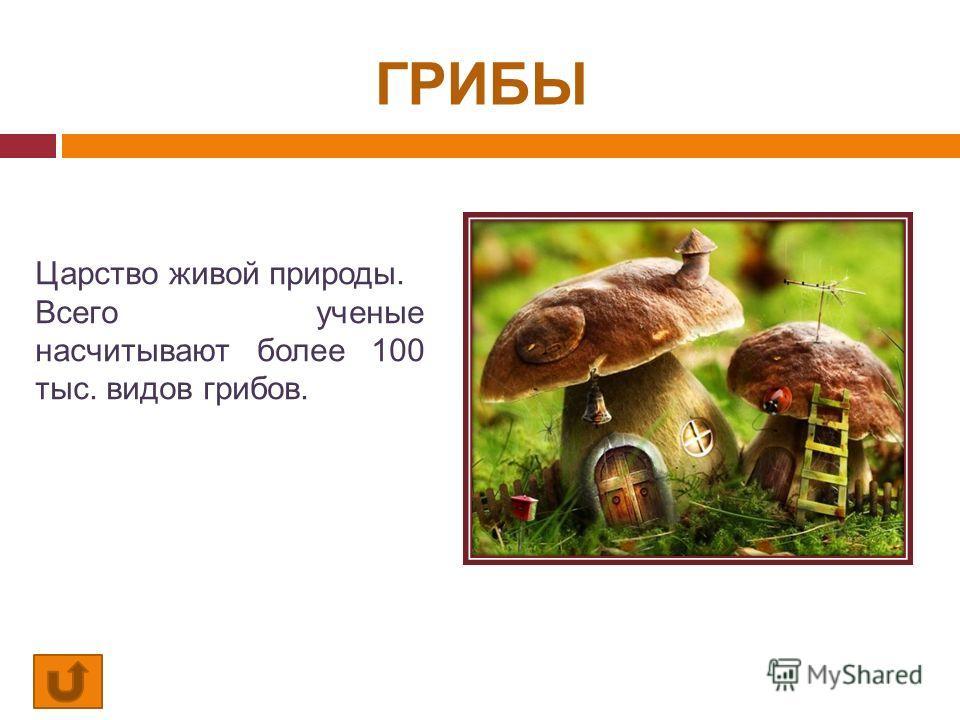 ГРИБЫ Царство живой природы. Всего ученые насчитывают более 100 тыс. видов грибов.