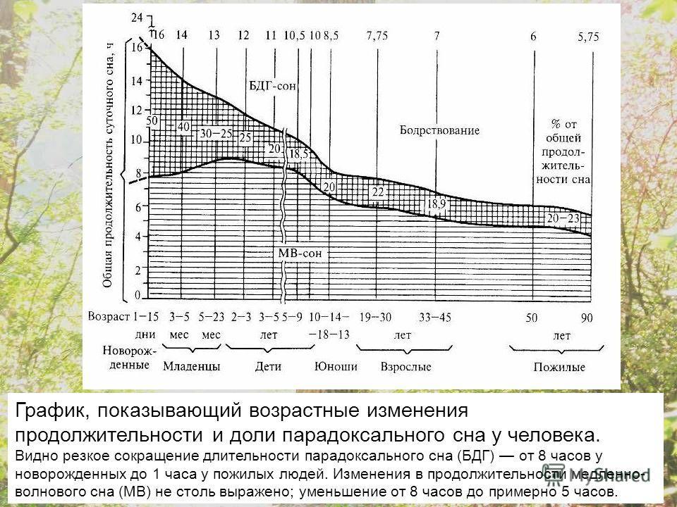 График, показывающий возрастные изменения продолжительности и доли парадоксального сна у человека. Видно резкое сокращение длительности парадоксального сна (БДГ) от 8 часов у новорожденных до 1 часа у пожилых людей. Изменения в продолжительности медл