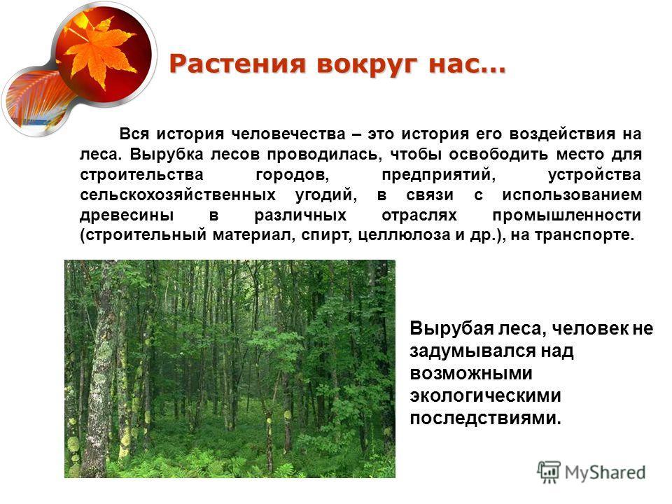 Растения вокруг нас… Вся история человечества – это история его воздействия на леса. Вырубка лесов проводилась, чтобы освободить место для строительства городов, предприятий, устройства сельскохозяйственных угодий, в связи с использованием древесины