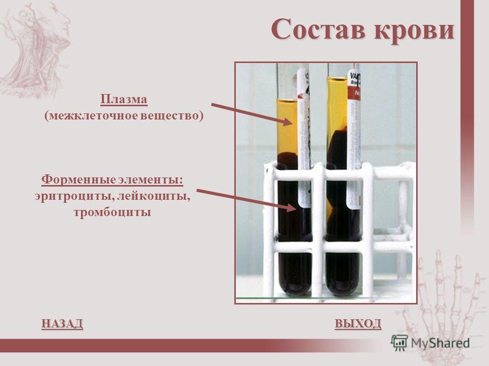 Состав крови Плазма (межклеточное вещество) Форменные элементы: эритроциты, лейкоциты, тромбоциты НАЗАДВЫХОД НАЗАДВЫХОД