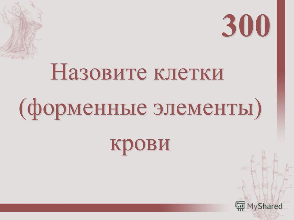 Назовите клетки (форменные элементы) (форменные элементы) крови крови 300