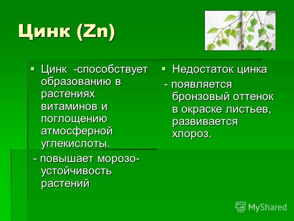 Цинк (Zn) Цинк -способствует образованию в растениях витаминов и поглощению атмосферной углекислоты. Цинк -способствует образованию в растениях витаминов и поглощению атмосферной углекислоты. - повышает морозо- устойчивость растений - повышает морозо