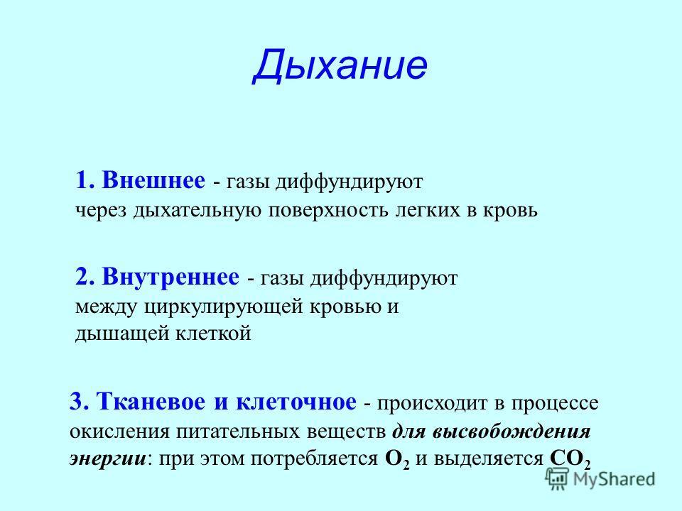 Дыхание 1. Внешнее - газы диффундируют через дыхательную поверхность легких в кровь 2. Внутреннее - газы диффундируют между циркулирующей кровью и дышащей клеткой 3. Тканевое и клеточное - происходит в процессе окисления питательных веществ для высво