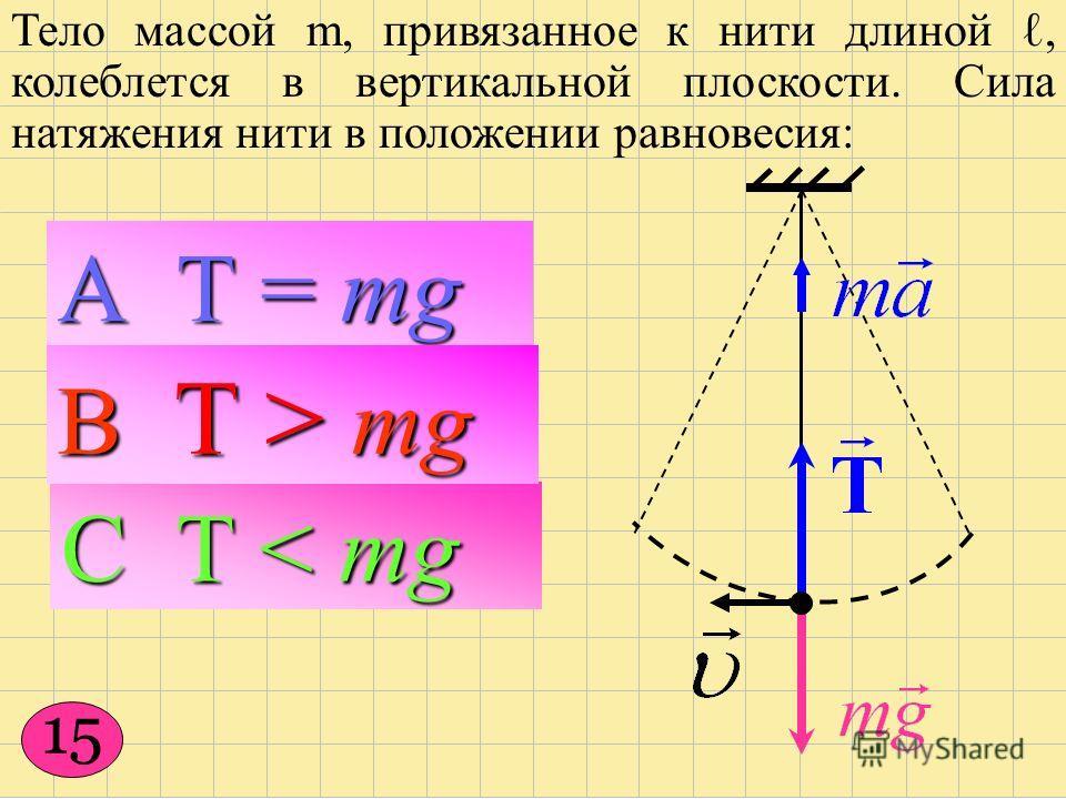 Тело массой m, привязанное к нити длиной, колеблется в вертикальной плоскости. Сила натяжения нити в положении равновесия: С Т < mg А Т = mg 15 В Т > mg