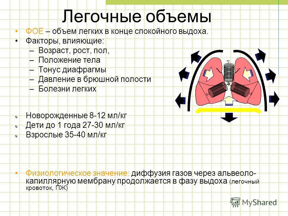 Легочные объемы ФОЕ – объем легких в конце спокойного выдоха. Факторы, влияющие: –Возраст, рост, пол, –Положение тела –Тонус диафрагмы –Давление в брюшной полости –Болезни легких Новорожденные 8-12 мл/кг Дети до 1 года 27-30 мл/кг Взрослые 35-40 мл/к