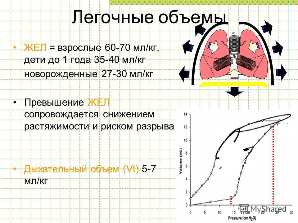 ЖЕЛ = взрослые 60-70 мл/кг, дети до 1 года 35-40 мл/кг новорожденные 27-30 мл/кг Превышение ЖЕЛ сопровождается снижением растяжимости и риском разрыва Дыхательный объем (Vt) 5-7 мл/кг Легочные объемы