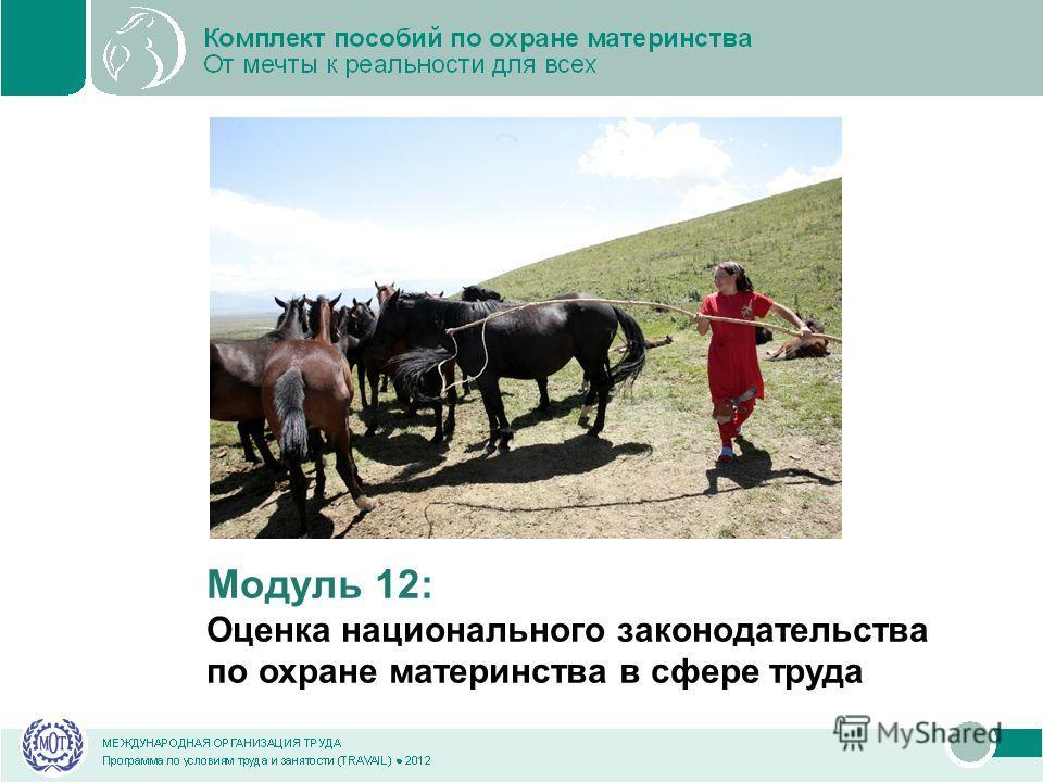 Модуль 12: Оценка национального законодательства по охране материнства в сфере труда