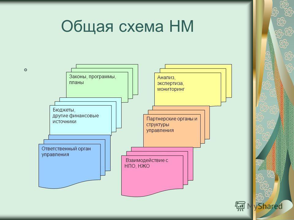 Общая схема НМ Законы, программы, планы Бюджеты, другие финансовые источники Анализ, экспертиза, мониторинг Партнерские органы и структуры управления Взаимодействие с НПО, НЖО Ответственный орган управления