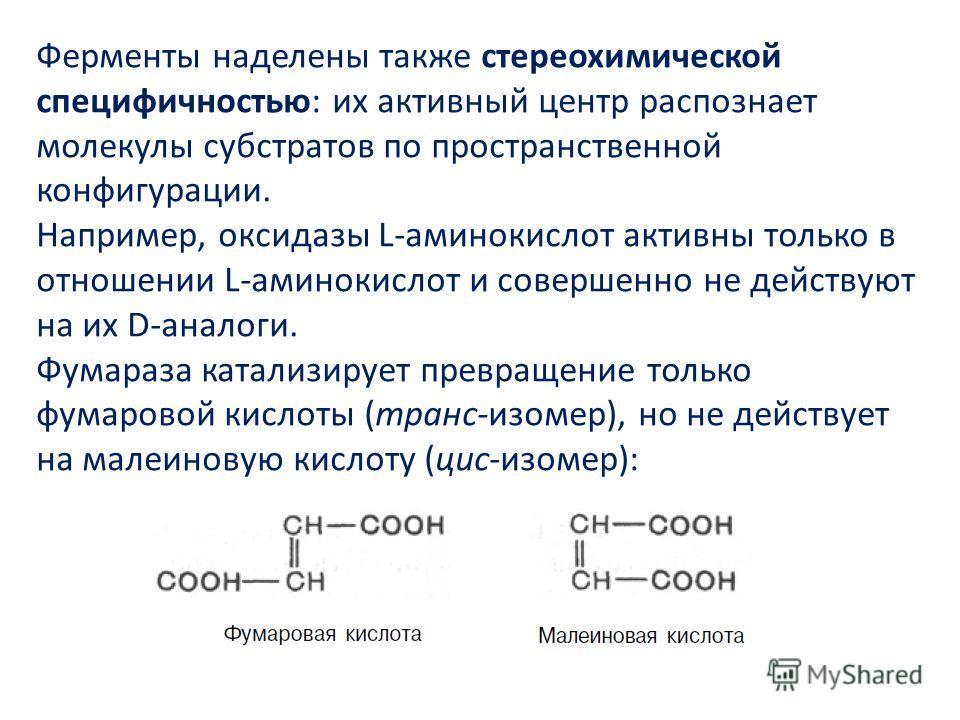 Ферменты наделены также стереохимической специфичностью: их активный центр распознает молекулы субстратов по пространственной конфигурации. Например, оксидазы L-аминокислот активны только в отношении L-аминокислот и совершенно не действуют на их D-ан