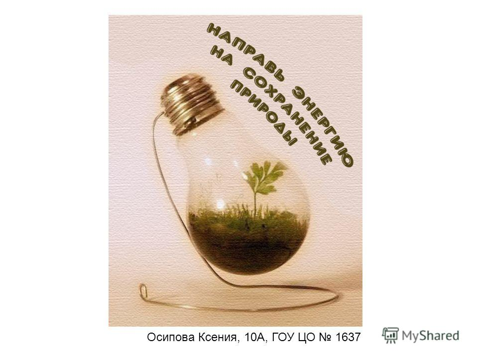 Осипова Ксения, 10А, ГОУ ЦО 1637