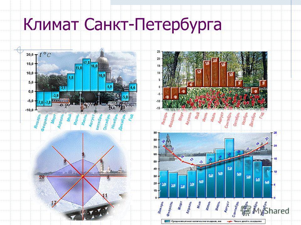 Климат Санкт-Петербурга