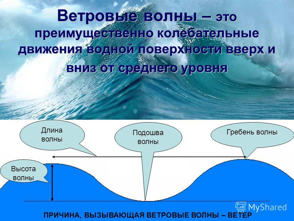 Ветровые волны Приливы и отливы Течения в океане Цунами