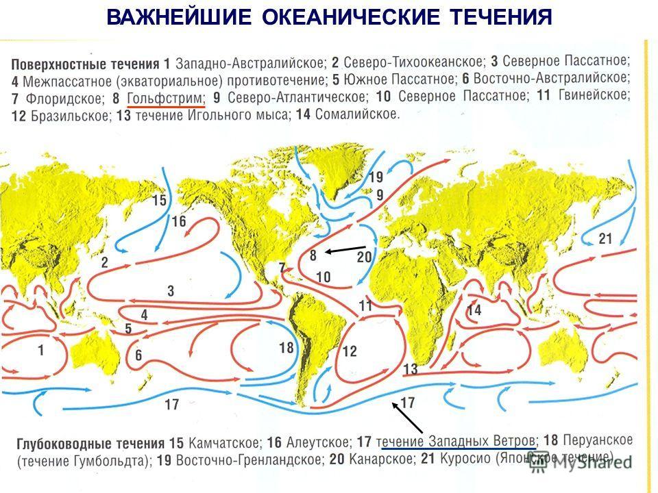 Т Е Ч Е Н И Я по tº по глубине теплыехолодныеповерхностные глубинные Гольфстрим течение Западных Ветров Гольфстрим течение Западных Ветров
