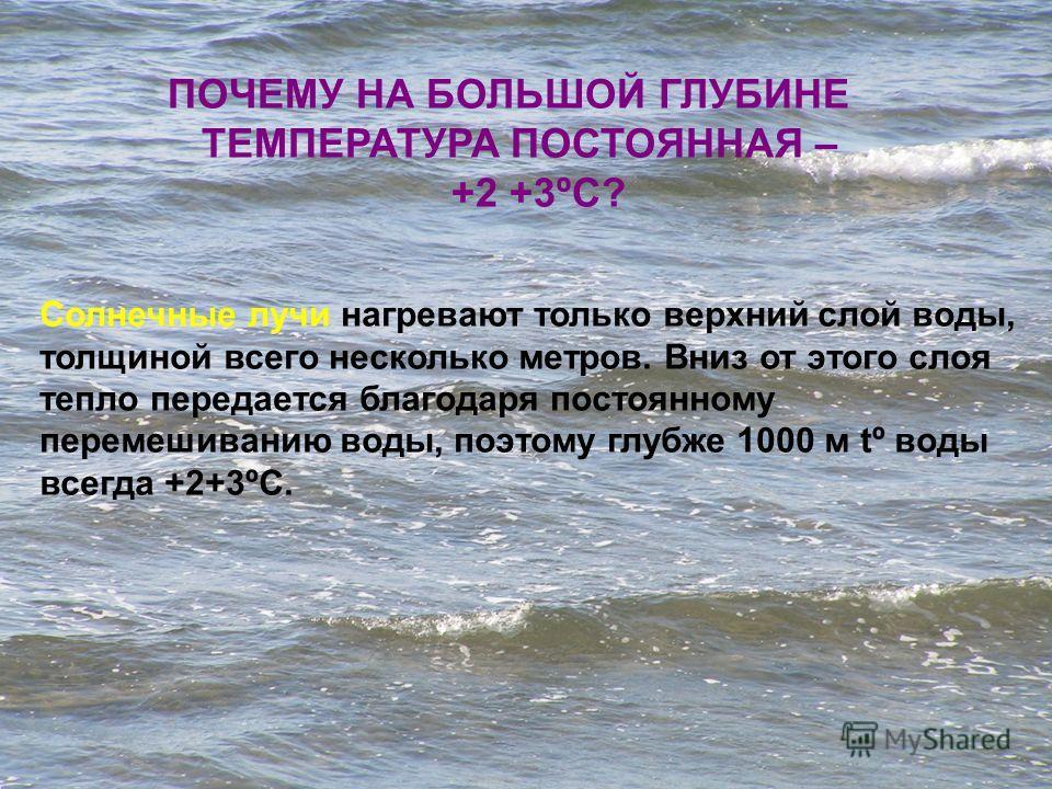 Вода в Мировом океане нагревается солнцем, но только в верхнем слое. Самая высокая температура воды у экватора (+27+28 ºС), самая низкая, в полярных областях (+1 ºС). ЭКВАТОР ПОЛЯРНАЯ ОБЛАСТЬ СРЕДНЯЯ ТЕМПЕРАТУРА ВОД МИРОВОГО ОКЕАНА + 4º С Т Е М П Е Р