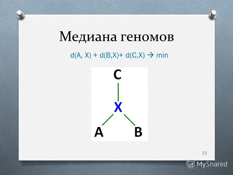Медиана геномов 15 d(A, X) + d(B,X)+ d(C,X) min