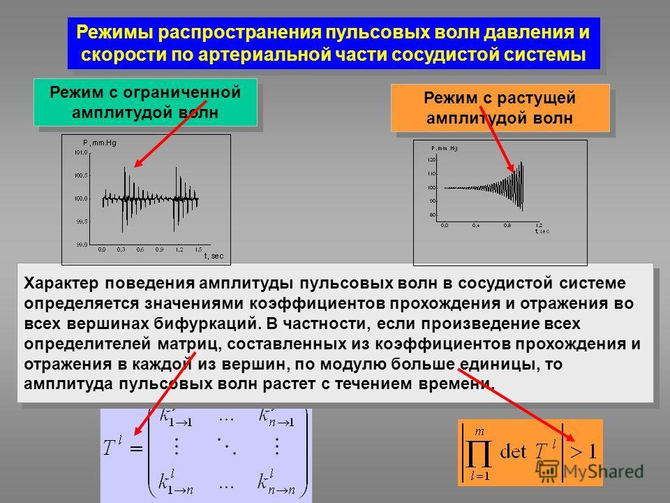 Характер поведения амплитуды пульсовых волн в сосудистой системе определяется значениями коэффициентов прохождения и отражения во всех вершинах бифуркаций. В частности, если произведение всех определителей матриц, составленных из коэффициентов прохож
