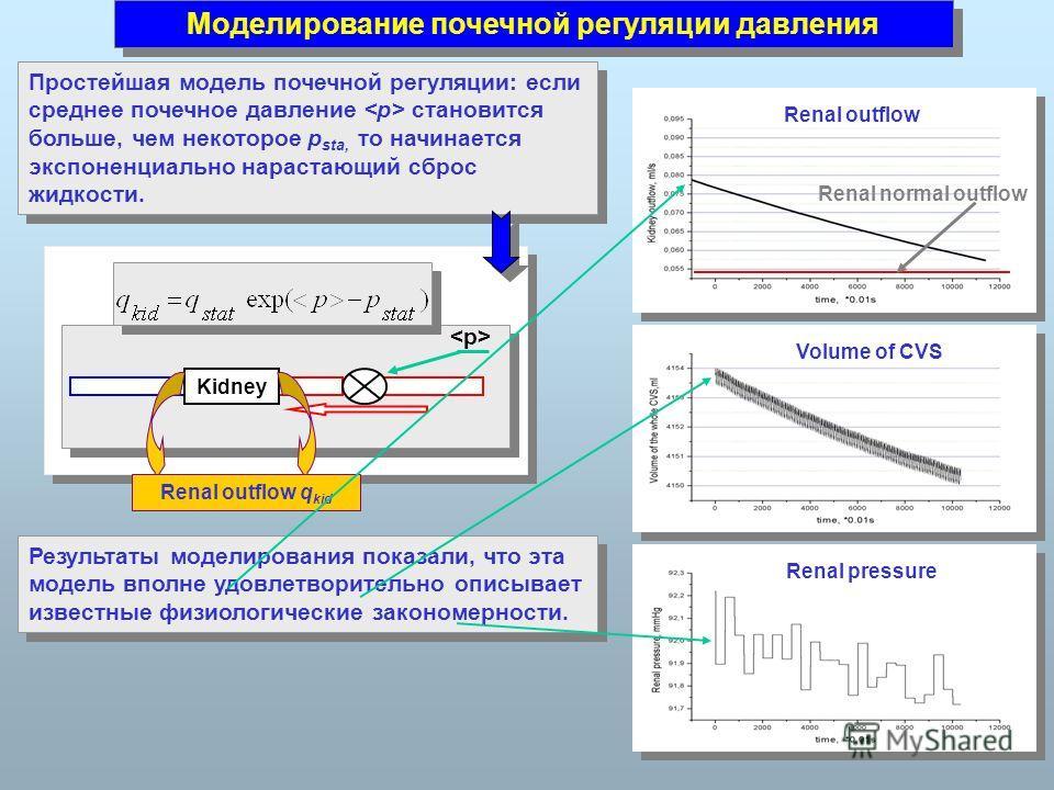 Моделирование почечной регуляции давления Renal pressure Volume of CVS Kidney Renal outflow q kid Простейшая модель почечной регуляции: если среднее почечное давление становится больше, чем некоторое p sta, то начинается экспоненциально нарастающий с