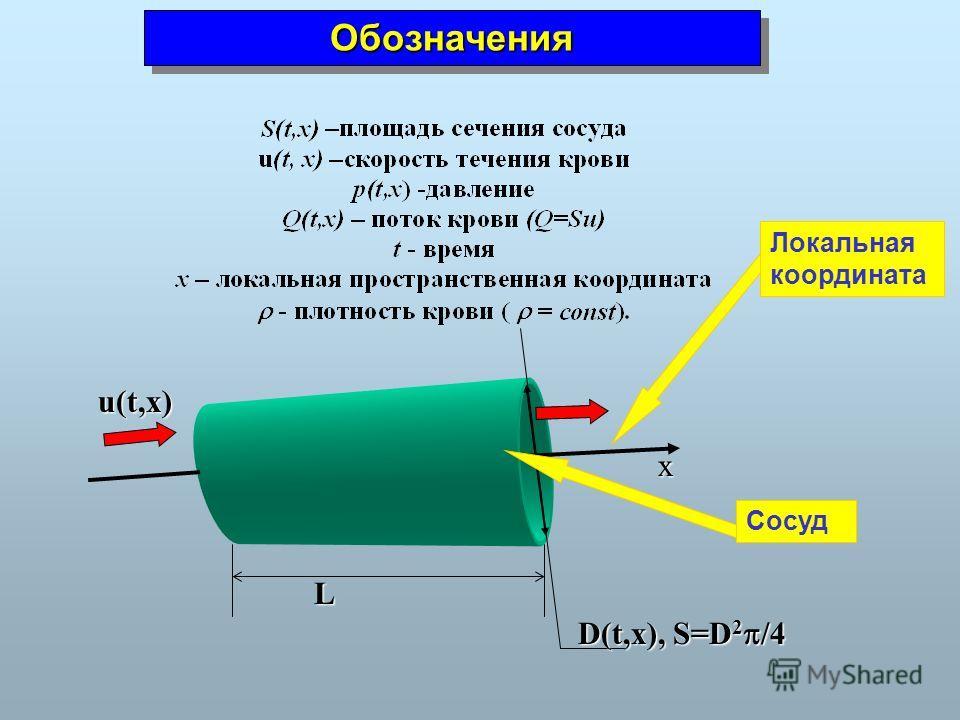 ОбозначенияОбозначения x u(t,x) L D(t,x), S=D 2 /4 Сосуд Локальная координата
