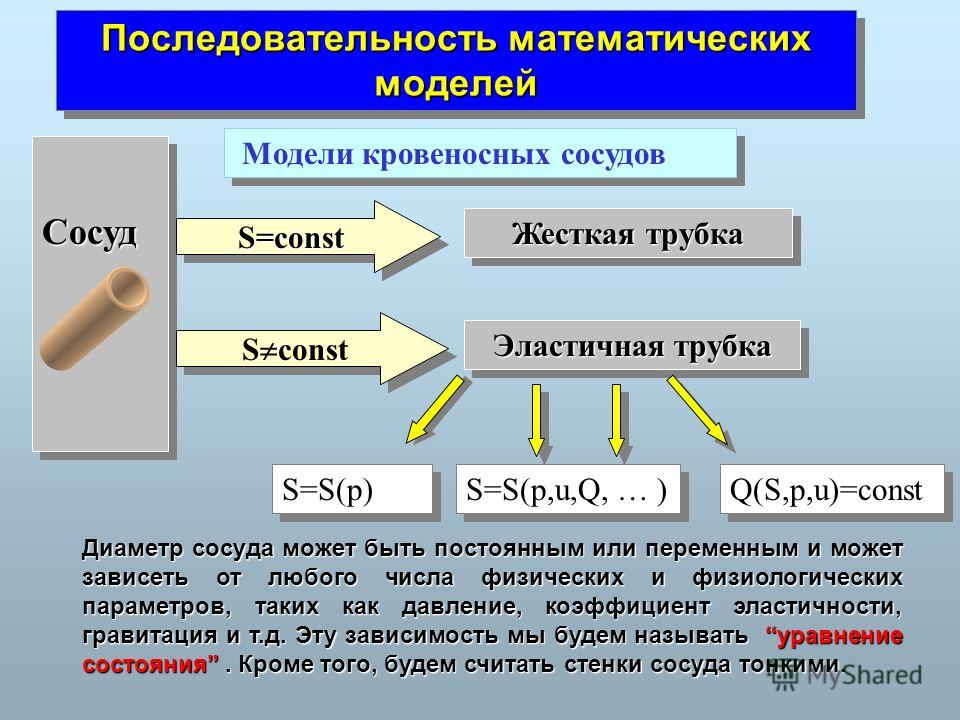 Последовательность математических моделей Модели кровеносных сосудов СосудСосуд Жесткая трубка Эластичная трубка S=constS=const S const S=S(p) S=S(p,u,Q, … ) Диаметр сосуда может быть постоянным или переменным и может зависеть от любого числа физичес