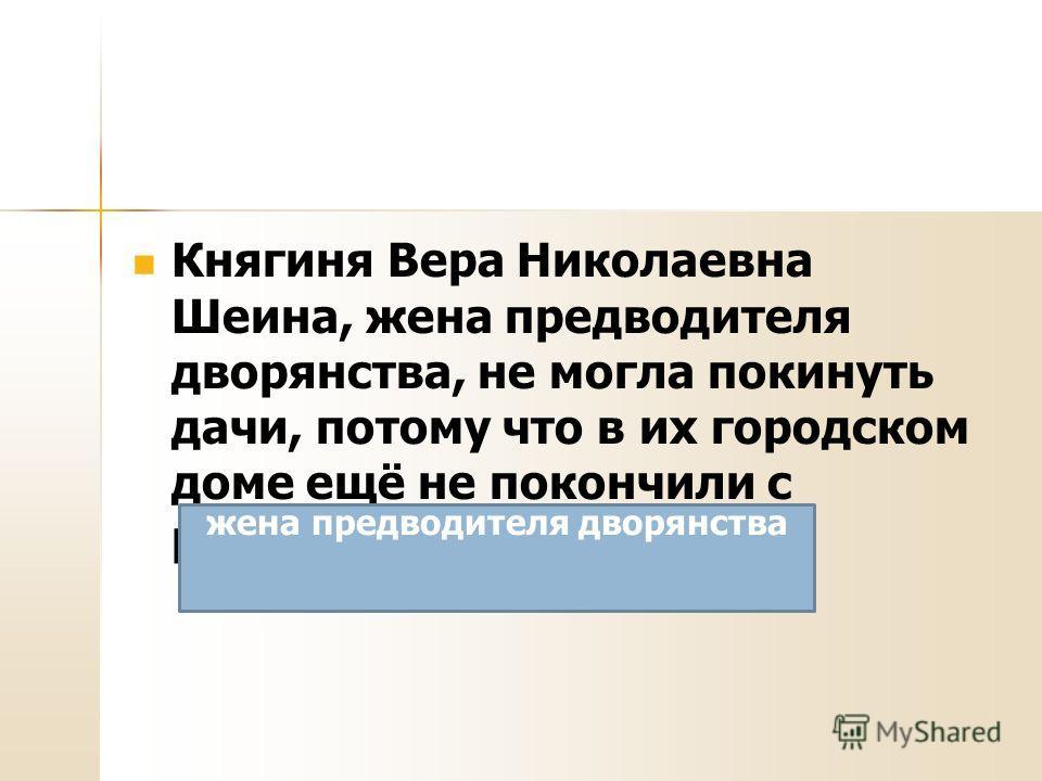 Княгиня Вера Николаевна Шеина, жена предводителя дворянства, не могла покинуть дачи, потому что в их городском доме ещё не покончили с ремонтом. жена предводителя дворянства