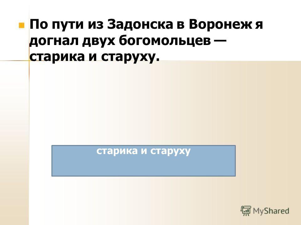 По пути из Задонска в Воронеж я догнал двух богомольцев старика и старуху. старика и старуху