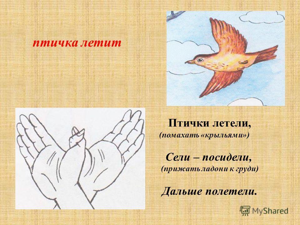 птичка летит Птички летели, (помахать «крыльями») Сели – посидели, (прижать ладони к груди) Дальше полетели.