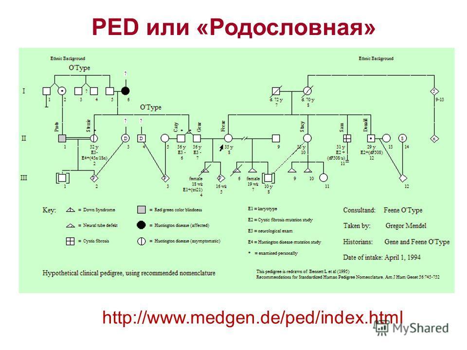 PED или «Родословная» http://www.medgen.de/ped/index.html