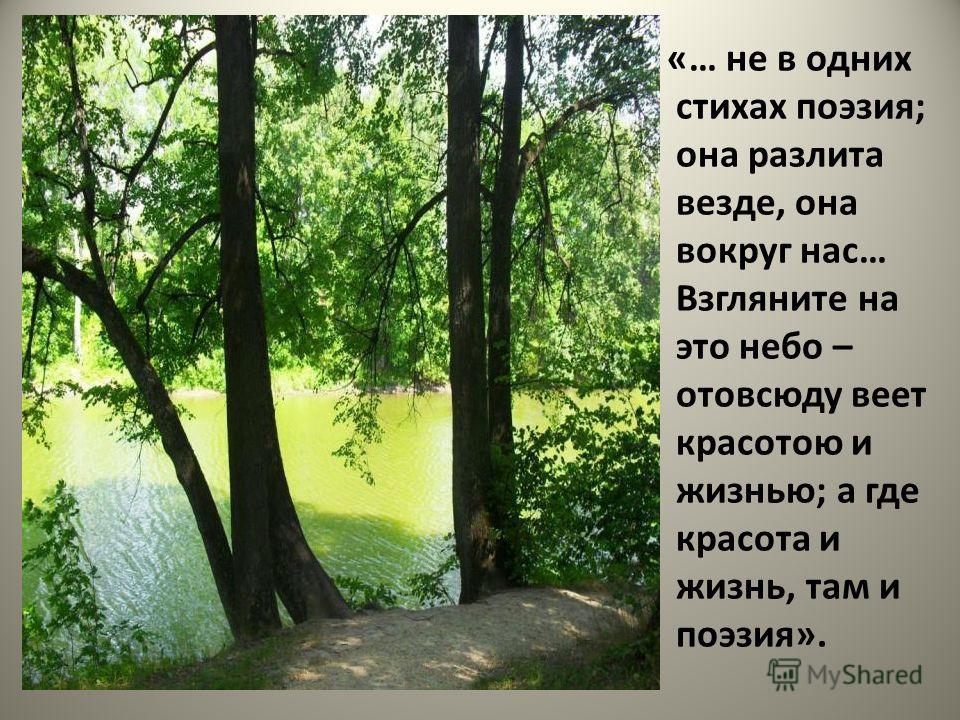 «… не в одних стихах поэзия; она разлита везде, она вокруг нас… Взгляните на это небо – отовсюду веет красотою и жизнью; а где красота и жизнь, там и поэзия».