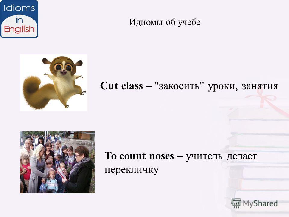 Идиомы об учебе To count noses – учитель делает перекличку Cut class – закосить уроки, занятия