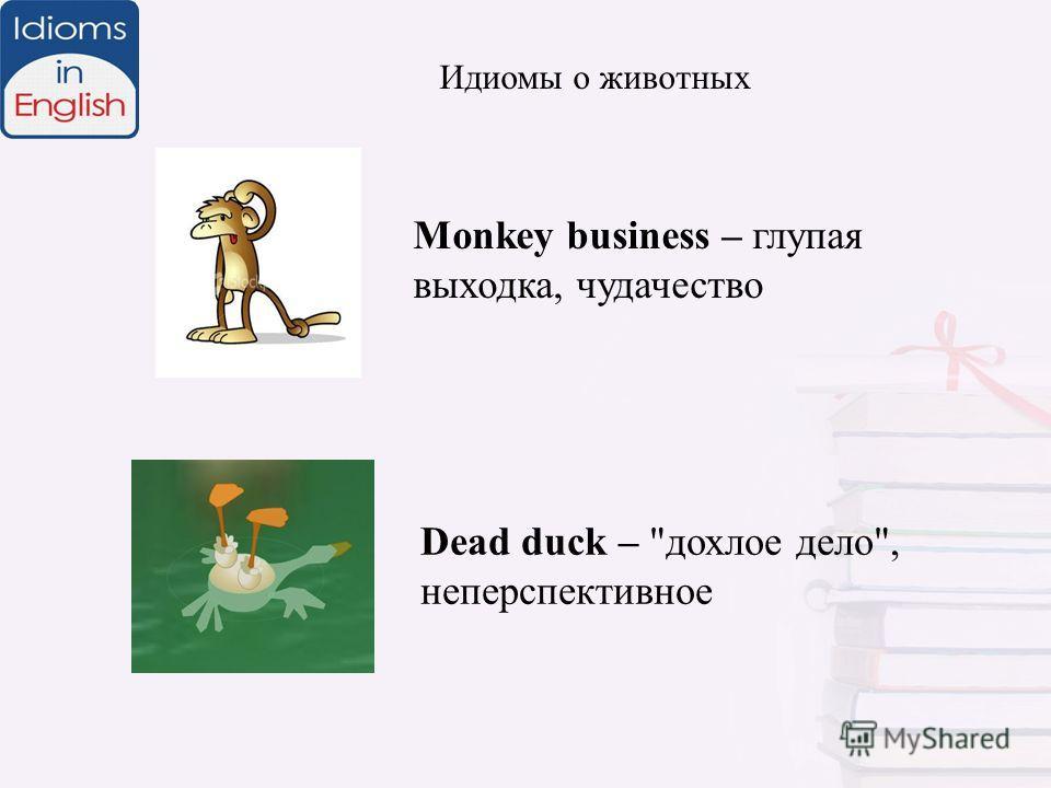 Monkey business – глупая выходка, чудачество Идиомы о животных Dead duck – дохлое дело, неперспективное