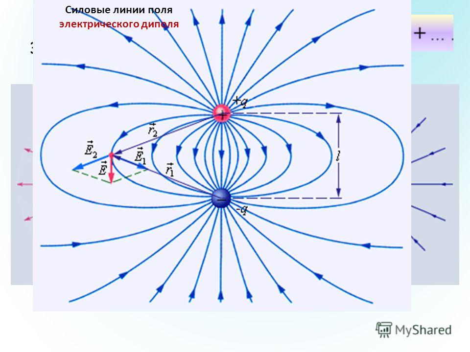 Силовые линии электрических полей Силовые линии кулоновских полей Силовые линии поля электрического диполя